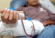 Reitera SS invitación a la donación altruista de sangre