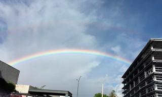 arcoiris-cdmx-2