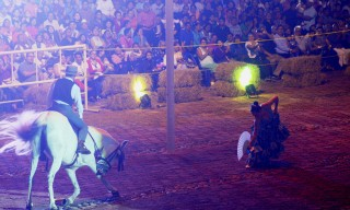 caballo-domecq-4