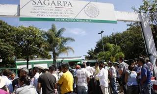 Xalapa, Ver.-  Tres organizaciones toman las instalaciones de la SAGARPA, Consejo Agrario Permanente la Red de organizaciones de Sociedad Civil y la Central de Organizaciones  Campesinas y Populares para exigir la entrega de 15 pequeños productores del campo. FOTO: AMBROSI PABLO HDEZ/FOTOVER.