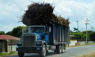 camion-canero