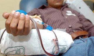 donar-sangre-1024x658