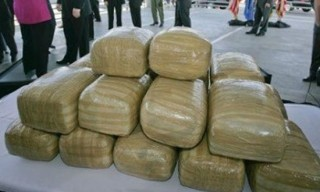 pgr-asegura-kilos-mariguana-2043099